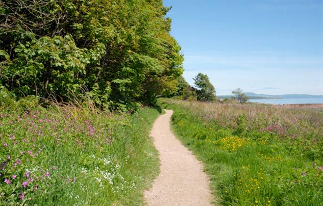 fife-coastal-path3