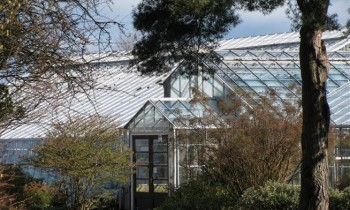 IMG_0529-Glasshouse-Entrance-350x210